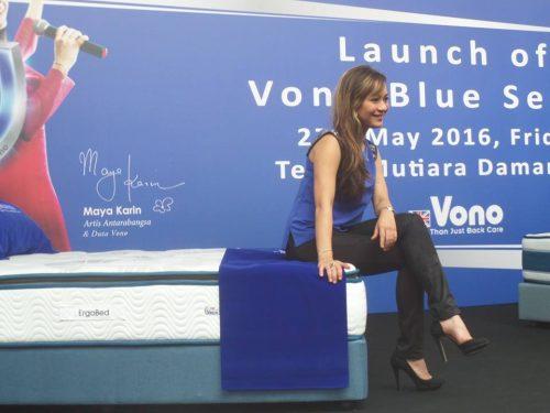 ErgoBed Blue & The Vono Blue Truck